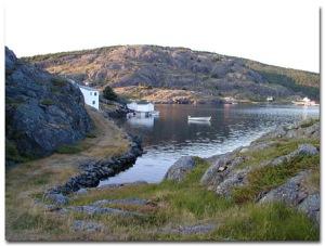 AAAA Newfoundland
