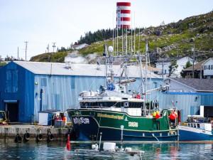 Twillingate-Harbour-Newfoundland-Spirit